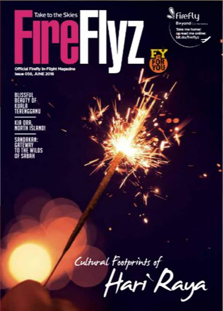 FireFlyz June 2018