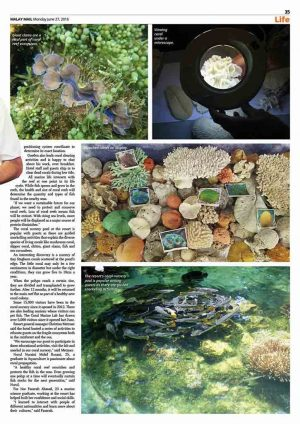 Rebuilding Andaman Reef One Polyp at a Time