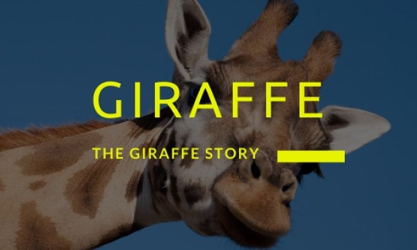 The Giraffe Story – Real or Otherwise