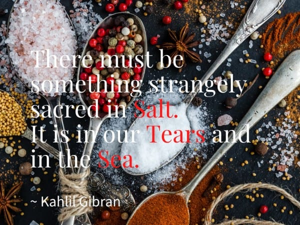 The story of salt and other stories